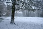 Snow stock 54 by Malleni-Stock