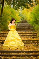 Belle - the Beast's rose by Rayi-kun
