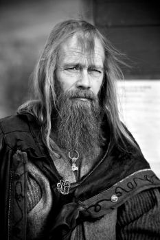 The viking by TomFindahl