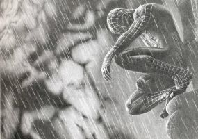The Amazing SpiderMan by georgesot