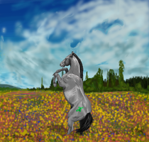 Fellony in a spring meadow by 4TheLoveOfAnimation