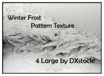 Winter Frost Pattern Textures by DXstock