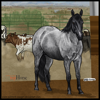 Spanky - HARPG's Next Top Horse 2012. Phase 3 by painted-cowgirl
