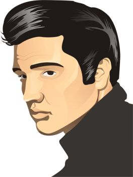 Guess who??? ELVIS by LittlePan
