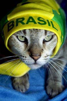 Cheering Brazil World Cup 2010 by JacquiJax