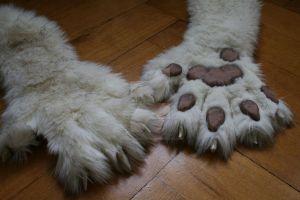 hand paws Tareco v2.0 intermediate stage by DeepDragonArts
