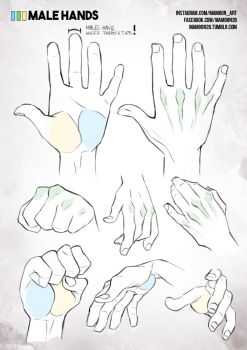 simplified anatomy 05 - male hands by mamoonart