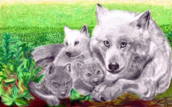 (Finished) Wolf family commission by hidden-by-art