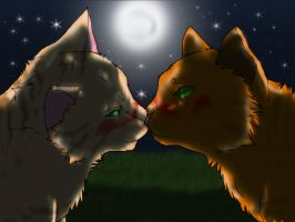 Sandstorm and Firestar-kiss on the starry night by danituco