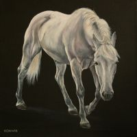 The Grey by Stephanie-Greaves