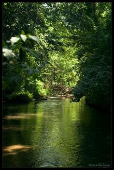 green waters by flx2000