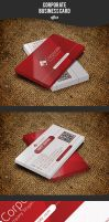 Corporate Business Card by afizs