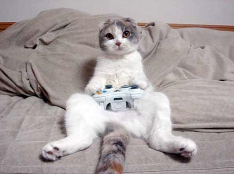 Playin' some video games by XxPoisonFangxX