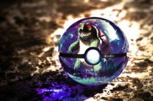 The Pokeball of the Real Squirtle