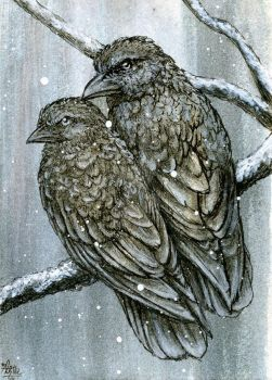 Snow Crows by LisaCrowBurke