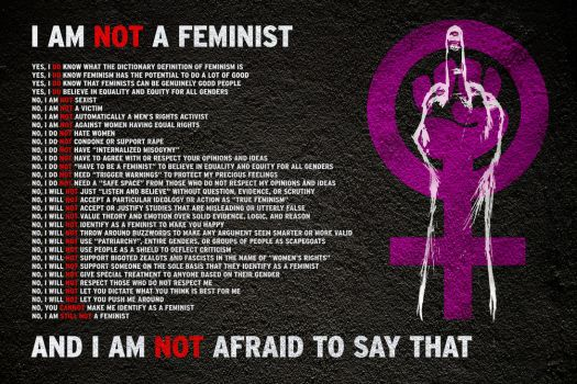 I Am NOT A Feminist by brentcherry