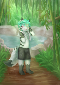 [c] Hot Springs by teuga