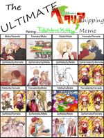 Hetalia pairing meme :by TidalWaveKitty: by TidalWaveKitty