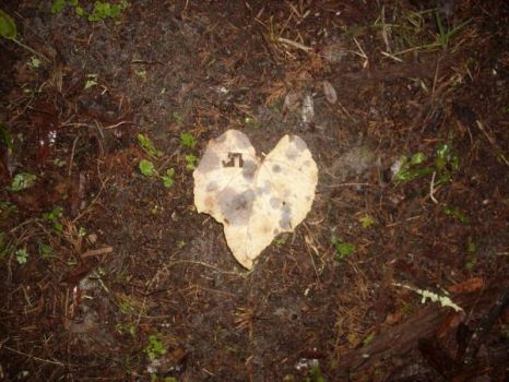Leaf Of Hearts by EvilBlackWolf