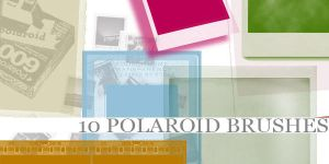 Polaroid Brushes by Aless1984