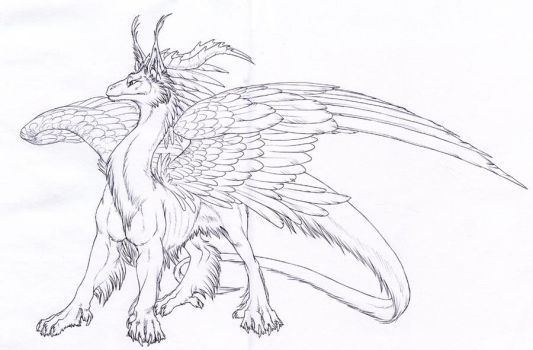 furry dragon lines 2 by hibbary