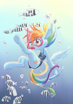 Diving Dashie by conbudou