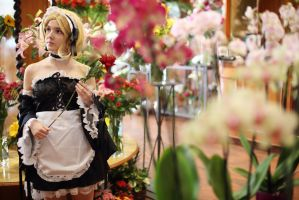 French maid France-APH by blanelle29