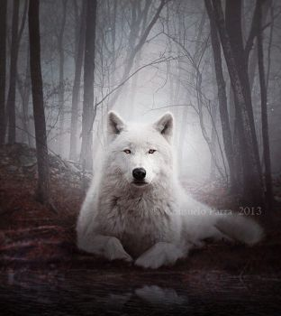 Silence of the Wolf by Aeternum-designs