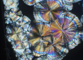 citric acid crystals3 by loganmiracle