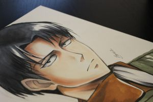Levi - Attack on Titan by Sophie--Chan