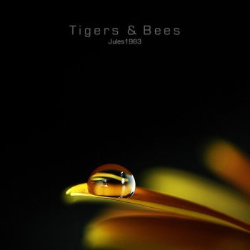 Tigers + Bees by Jules1983