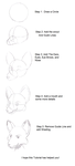 How to Draw Anthro Head by AnthroArtSchool