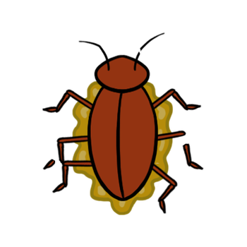 Cockroach Squashed by Evanest
