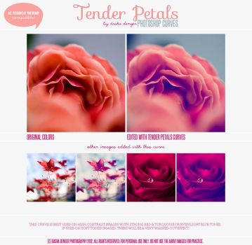 Tender Petals :: Photoshop Curves by onixa