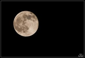Full Moon Rising Today 2 by Fedp