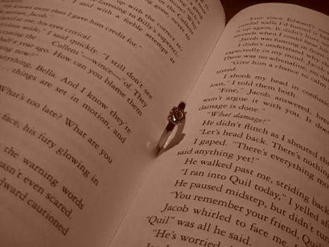 crossing pages by hands4u2fall