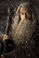 Gandalf Stormcrow (Adorindil) by YoungPhoenix3191