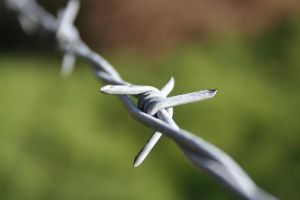 Barbed Wire by S13Style
