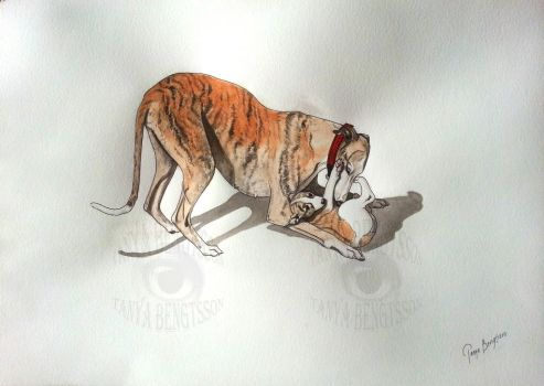 Whippet - A Mothers Love by RaggedVixen