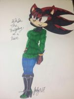 Akela the Hedgehog Colored! by MatakietheHedgewolf