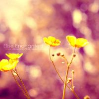 Filled with light by EliseEnchanted