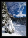 Winter surprise by joffo1