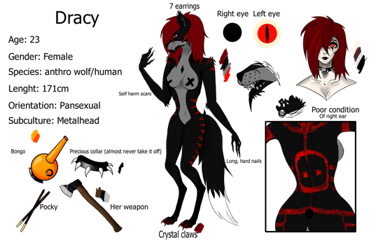 Dracy Reference by dracolichh616