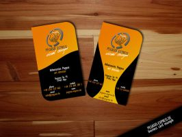 Business Card Example 001 by Pegasus-Express
