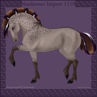1110 Group Horse Import by Cloudrunner64