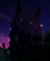 The Black Wolf by LewKat